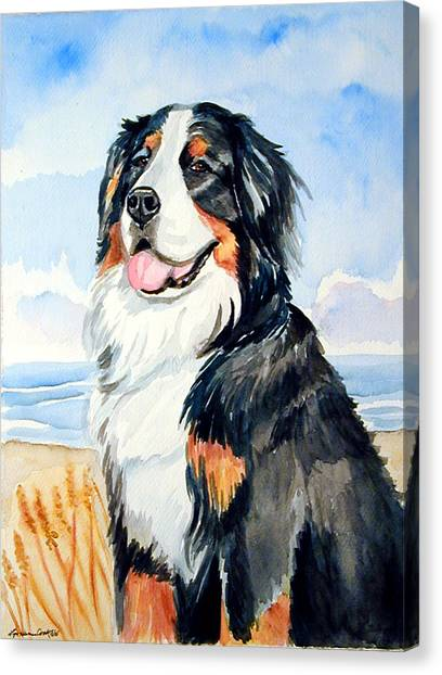 Bernese Mountain Dogs Canvas Print - A Summer Day - Bernese Mountain Dog by Lyn Cook