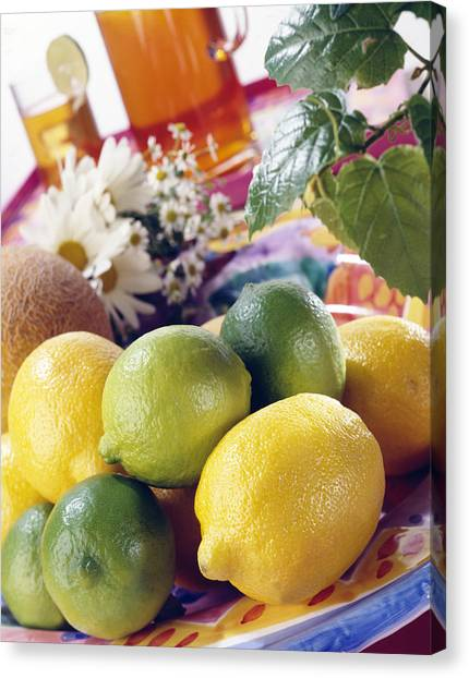 Iced Tea Canvas Print - A Summer Table Setting With Lemons And Limes by Steve Wisbauer