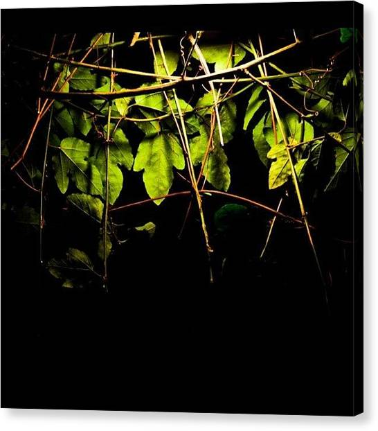 Lightning Canvas Print - A Tale From The #green In #night Of A by The Art.box