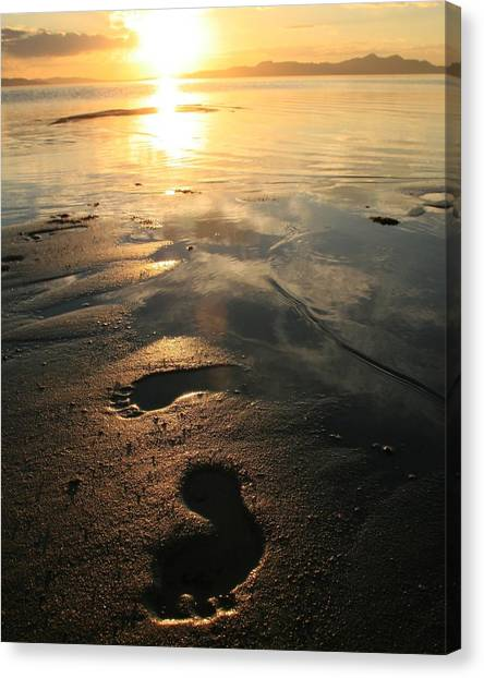 A Walk In The Sand Canvas Print by Gene Praag
