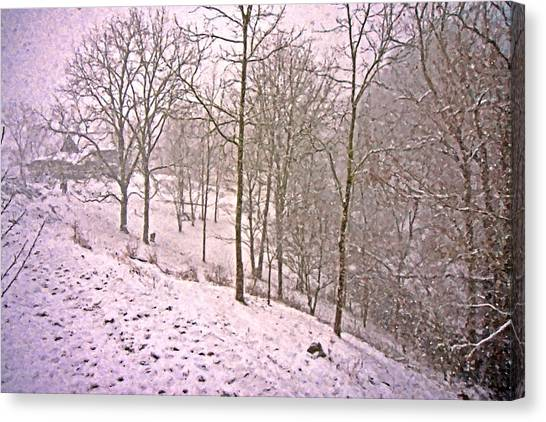 Southwest Canvas Print - A Walk In The Snow by Betsy Knapp