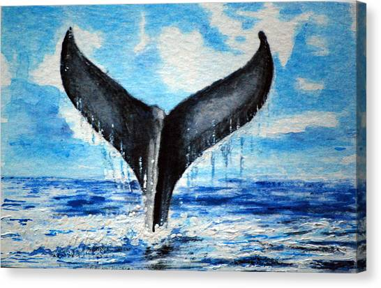 A Whales Tail Canvas Print