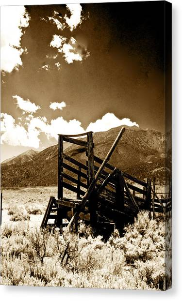 Abandoned Cattle Shoot Canvas Print