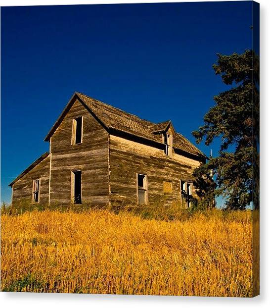 Saskatchewan Canvas Print - #abandoned #prairie #homestead  #300 by Michael Squier
