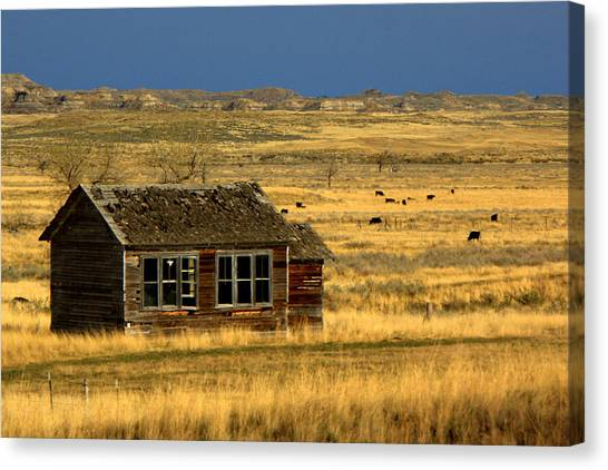 Abandoned School Canvas Print - Abandoned Schoolhouse by Tam Graff