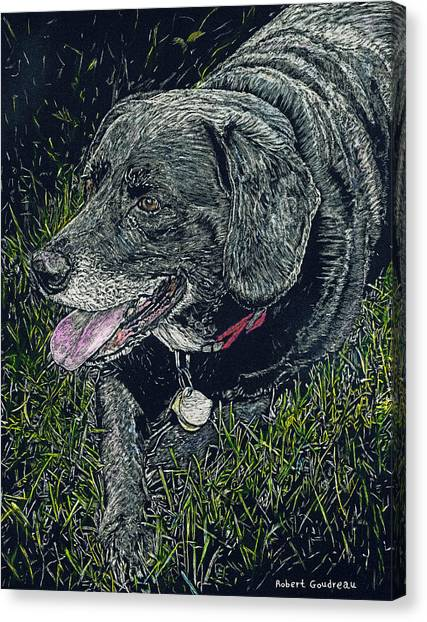 Abbe The Dog Canvas Print by Robert Goudreau