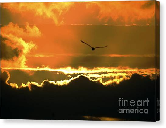 Above The Clouds Canvas Print by Johanne Peale
