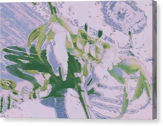 Abstract Crab1 Canvas Print