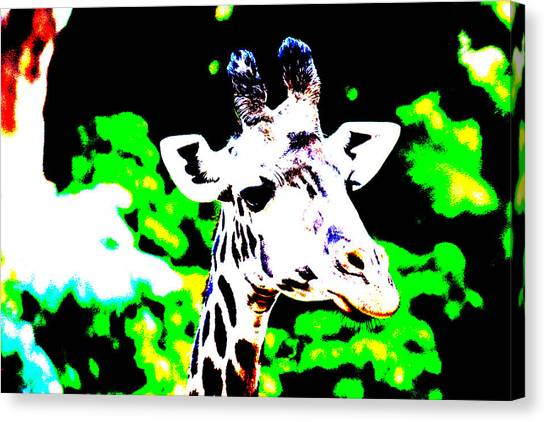 Abstract Giraffe Canvas Print