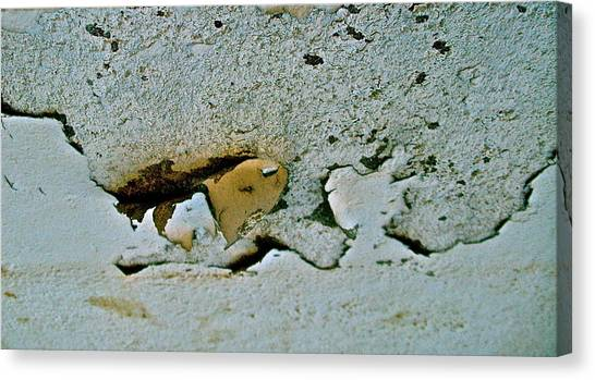 Abstract Photo Canvas Print by Cliff Spohn