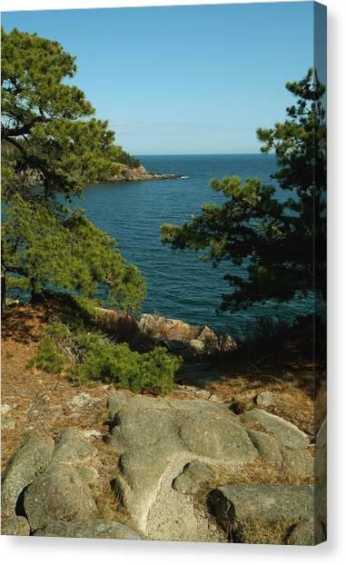 Acadia In Maine Canvas Print