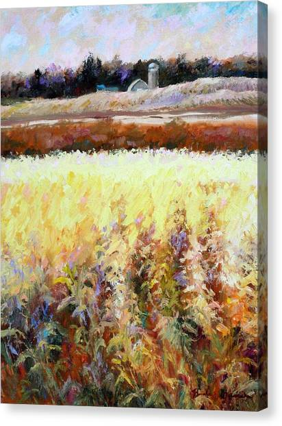 Across The Cornfield Canvas Print