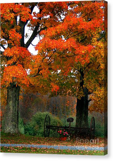 Adirondack Palette Canvas Print