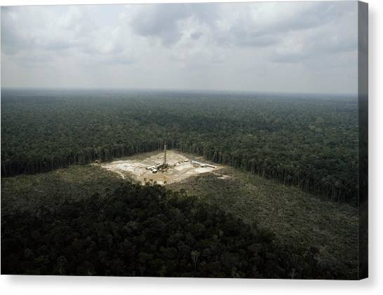 Amazon River Canvas Print - Aerial Of Oil Drilling by James P. Blair