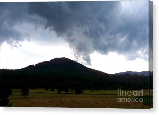 After The Storm 3 Canvas Print by Peggy Miller