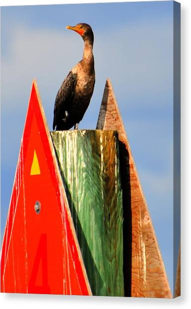 Afternoon Fishing Canvas Print by Barry R Jones Jr