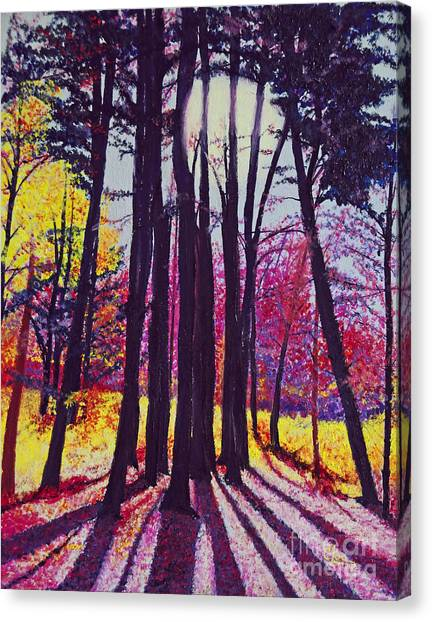 Afternoon Forest Canvas Print