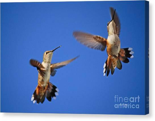 Air Dance Canvas Print