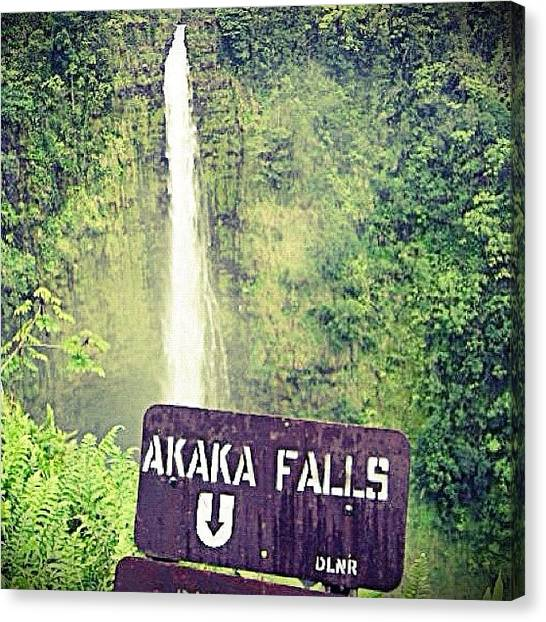 Waterfalls Canvas Print - Akaka Falls by Jessica Daubenmire