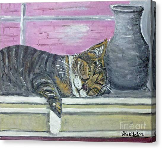 Alex On Windowsill  Canvas Print