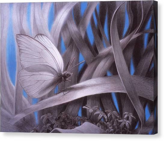 Allambie To Remain Awhile Canvas Print