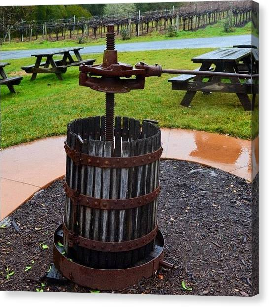 Winery Canvas Print - #all_shots #photo #picture #ig #igers by Birgit Zimmerman