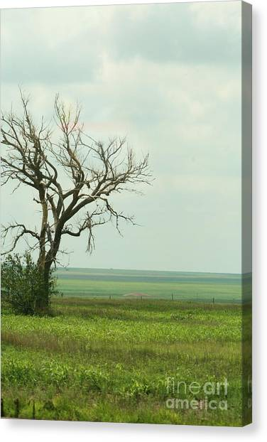 alone on the Prairie Canvas Print