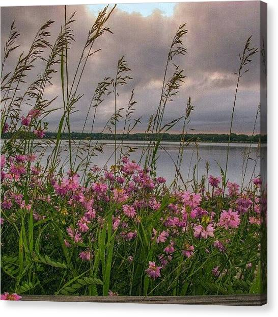 Maine Canvas Print - Along The Path #backcove by Chris T Darling