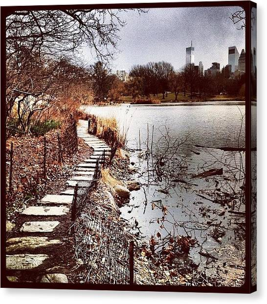 Drink Canvas Print - Along The Water. #centralpark #nyc by Luke Kingma