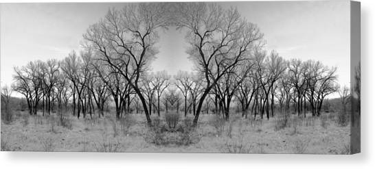 Altered Series - Bare Double Canvas Print