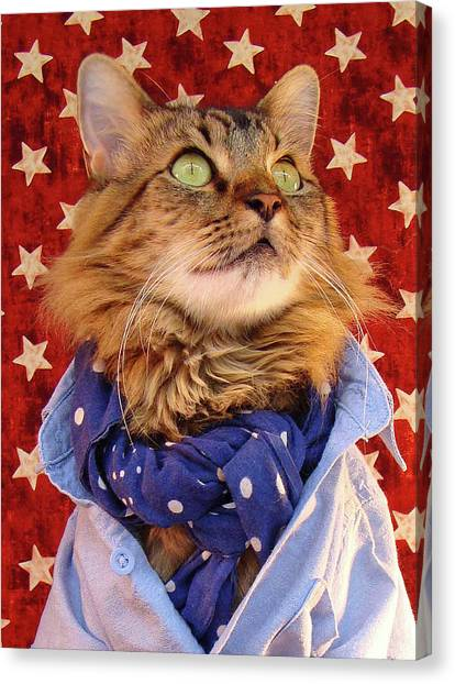 Americana Cat Canvas Print