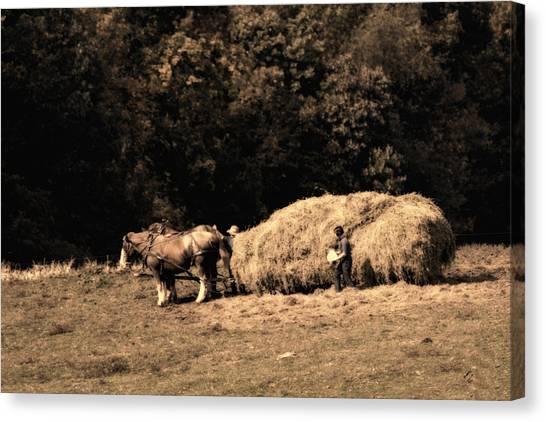 Amish Canvas Print - Amish Hay Wagon by Tom Mc Nemar