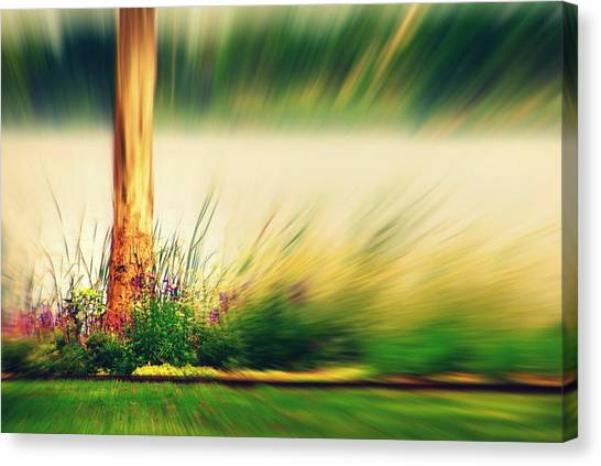 An Explosion Of Beauty Canvas Print by Shalini George