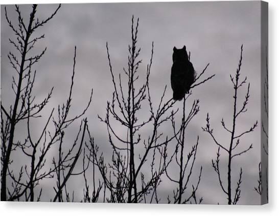 An Owl Silhouette Canvas Print