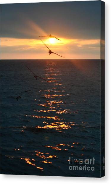 ...and At The End Of The Day... Canvas Print