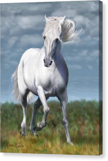 Andalusian Freedom Canvas Print by Suni Roveto