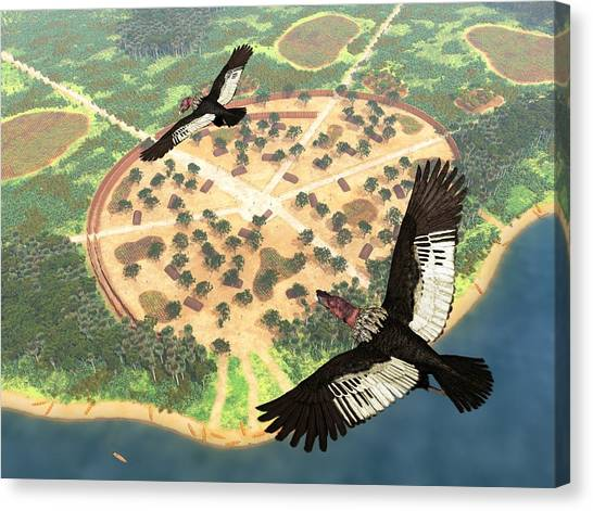 Condors Canvas Print - Andean Condors, Artwork by Walter Myers
