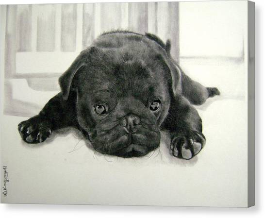 Andy's Puppy Canvas Print