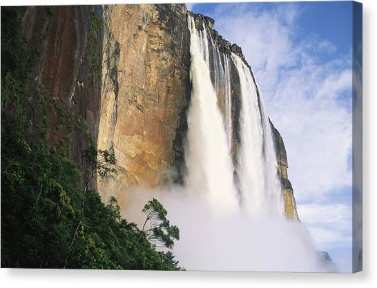 Angel Falls Canvas Print - Angel Falls, Cliffs And Trees by Mark Cosslett