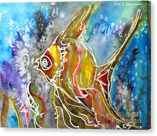 Angel Fish Canvas Print by M c Sturman