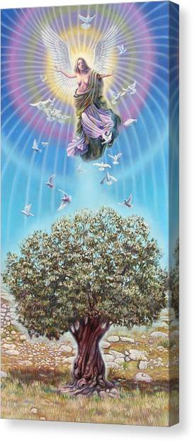 Angel Over The Olive Tree Canvas Print by Miguel Tio