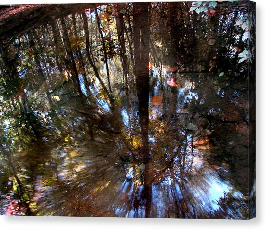 Gaston County Canvas Print - Anomaly  by Tammy Cantrell
