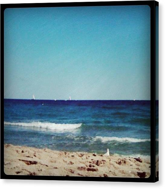 Seagulls Canvas Print - Another Beautiful Day! #beach #boats by Emily W