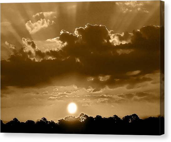 Another Florida Morning Canvas Print