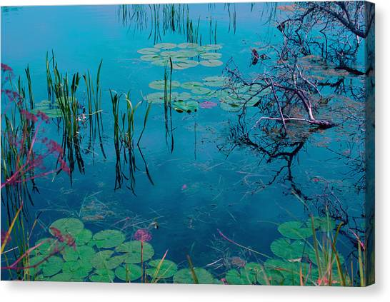 Another World Vii Canvas Print
