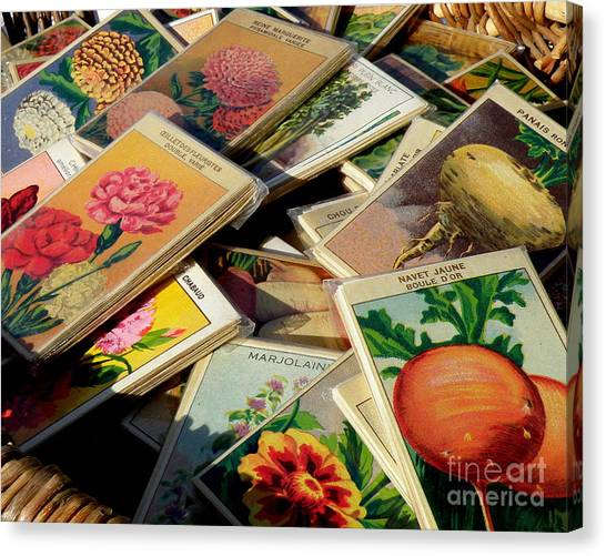 Antique French Seed Packs Canvas Print
