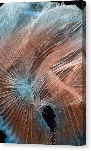 Aqua Amber Texture Canvas Print