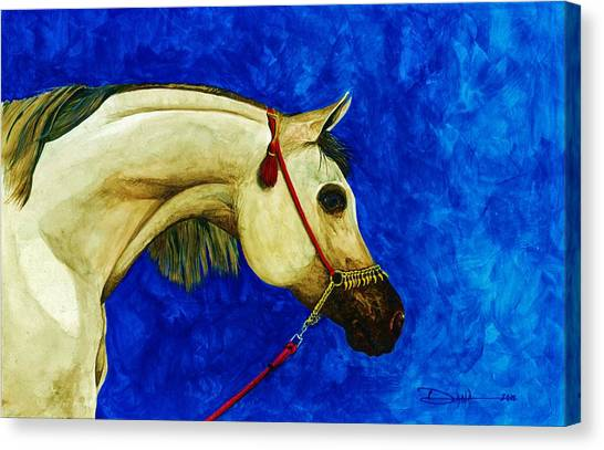 Arabian Beauty Canvas Print by Dana Newman