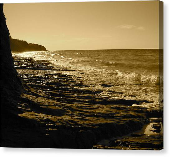Arisaig Park Canvas Print