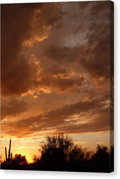 Arizona Golden Sunset Photograph By Ruby Farias